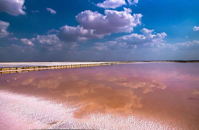 розовое озеро в крыму евпатория как доехать